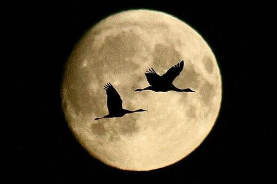 Освещенность лунной поверхности и цветовые характеристики поверхности Луны